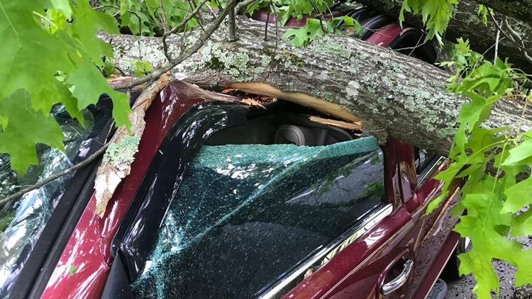 Massive oak crushes truck in Brookhaven