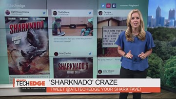 'Sharknado' Craze