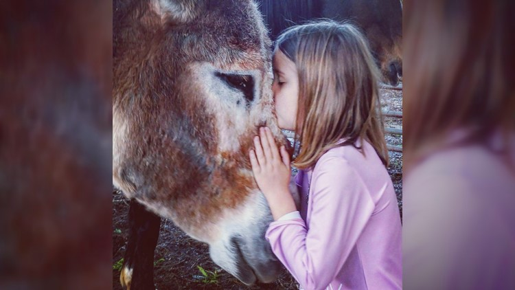 Addie Butler with PANDAS kissing donkey
