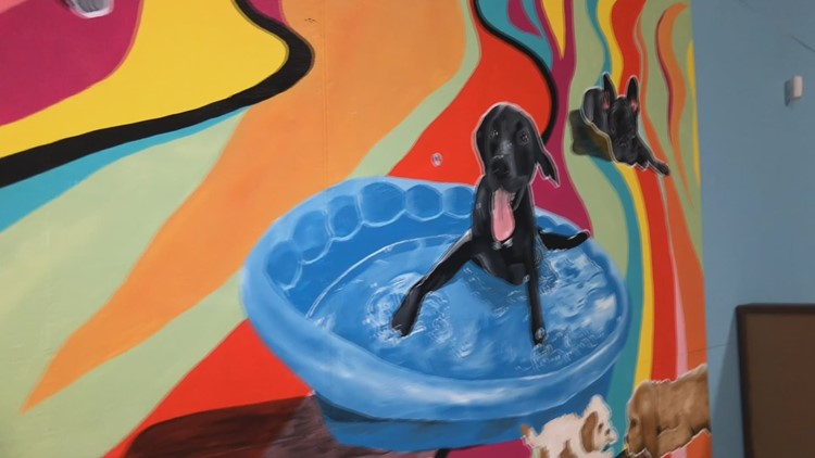 Dog daycare gives back through puppies and paint