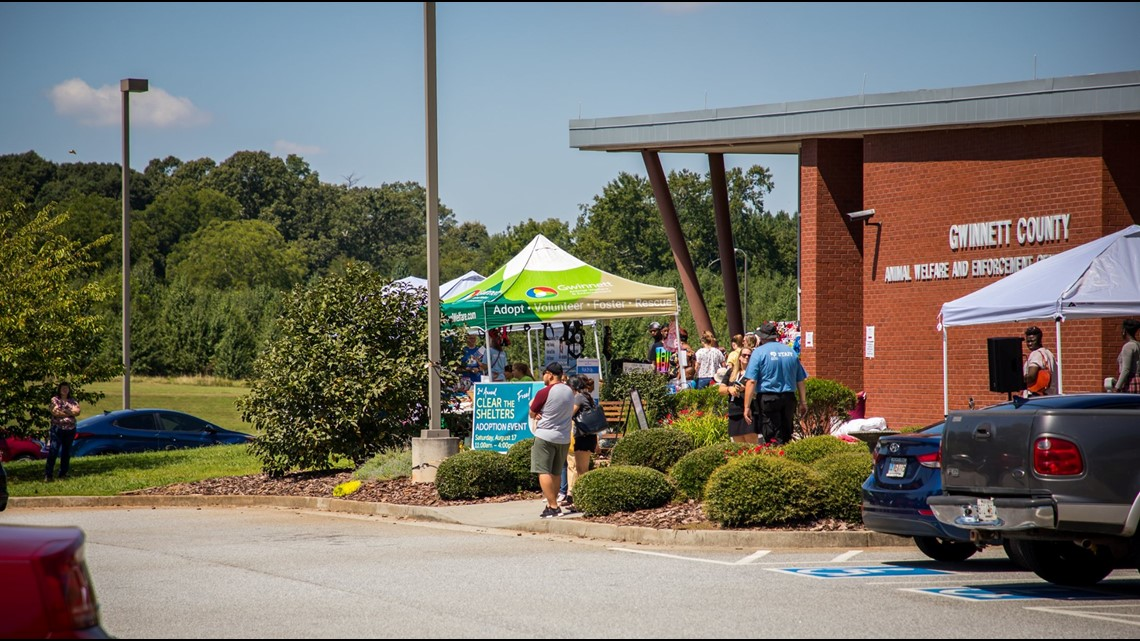 Gwinnett County Animal Shelter successfully clears the shelter