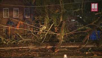 Crews remove a tree near the corner of Glenwood and Moreland avenues