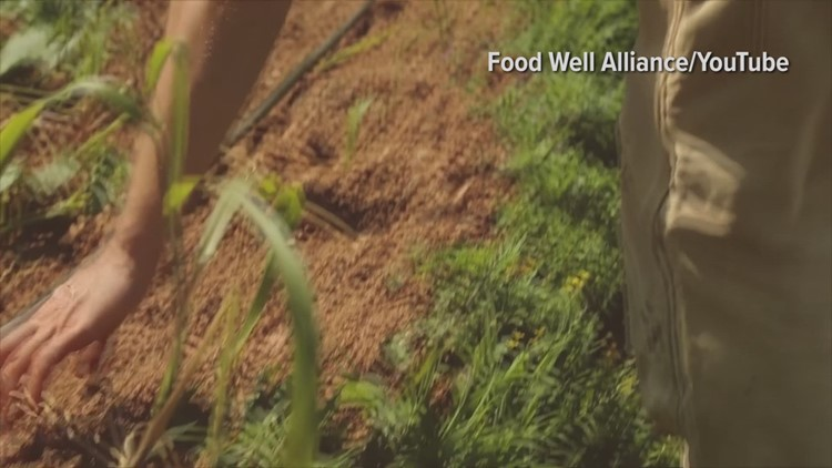 East Point awarded Food Well Alliance program